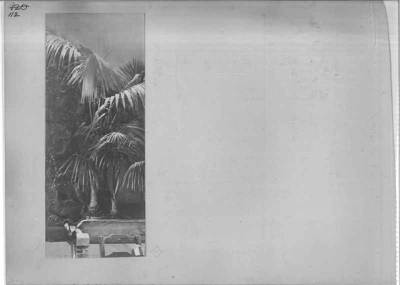 Mission Photograph Album - Miscellaneous - O.P. #01 Page_0112