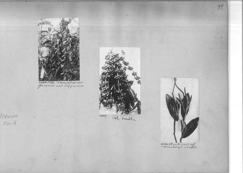 Mission Photograph Album - Mexico #04 page 0077