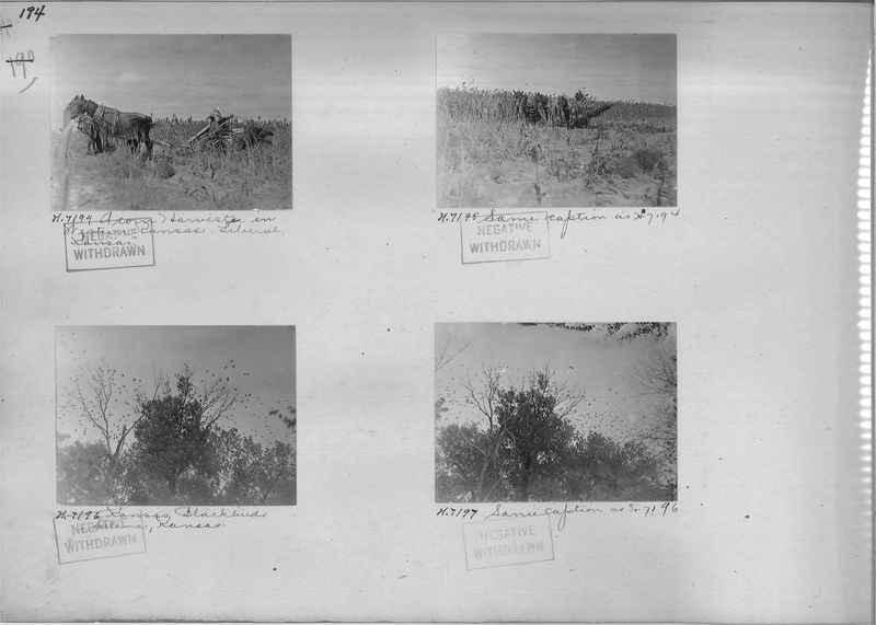Mission Photograph Album - Rural #02 Page_0194