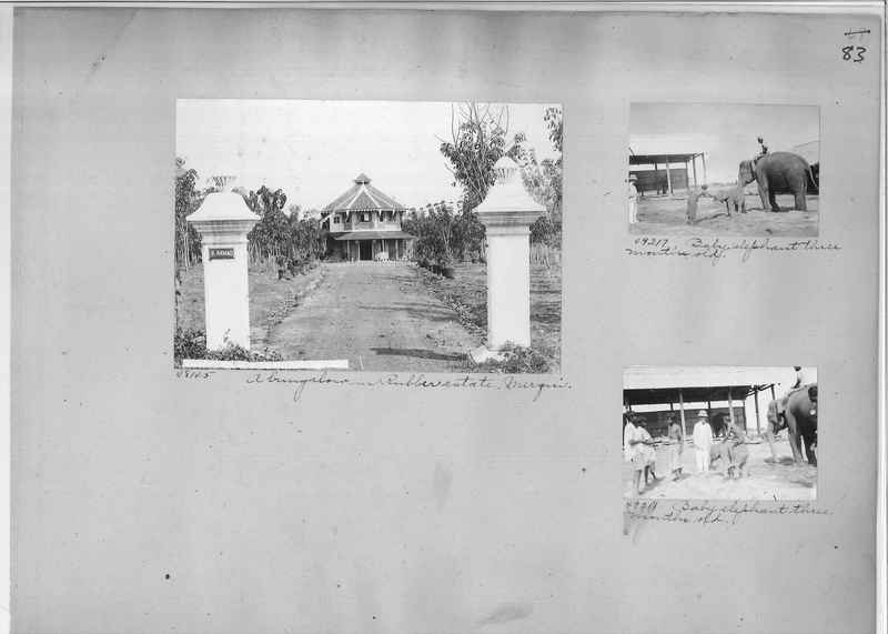 Mission Photograph Album - Burma #1 page 0083