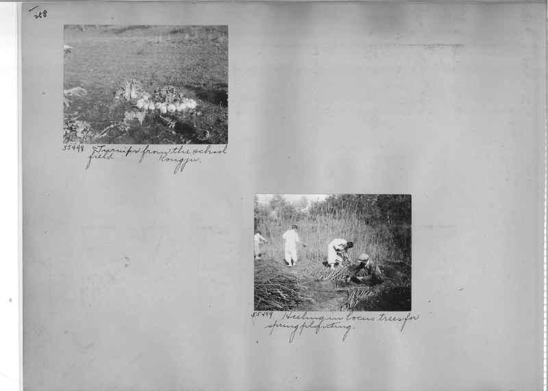 Mission Photograph Album - Korea #04 page 0258.jpg