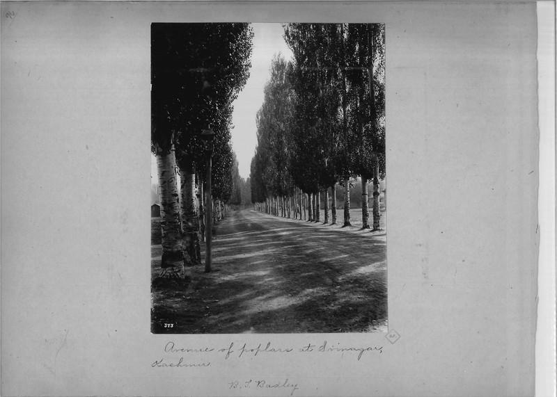 Mission Photograph Album - India - O.P. #02 Page 0096