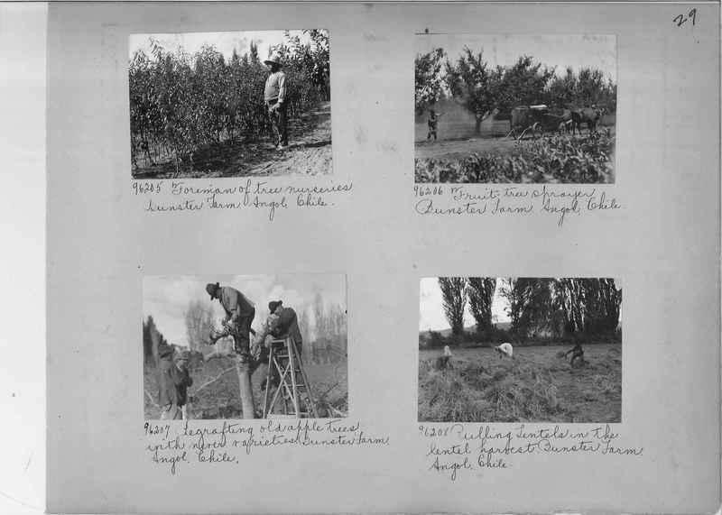 Misson Photograph Album - South America #8 page 0029
