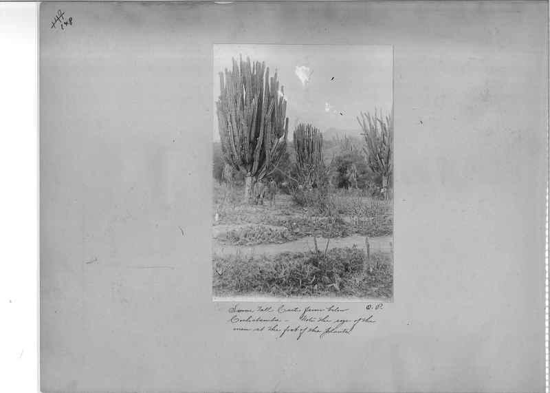 Mission Photograph Album - South America O.P. #1 page 0148