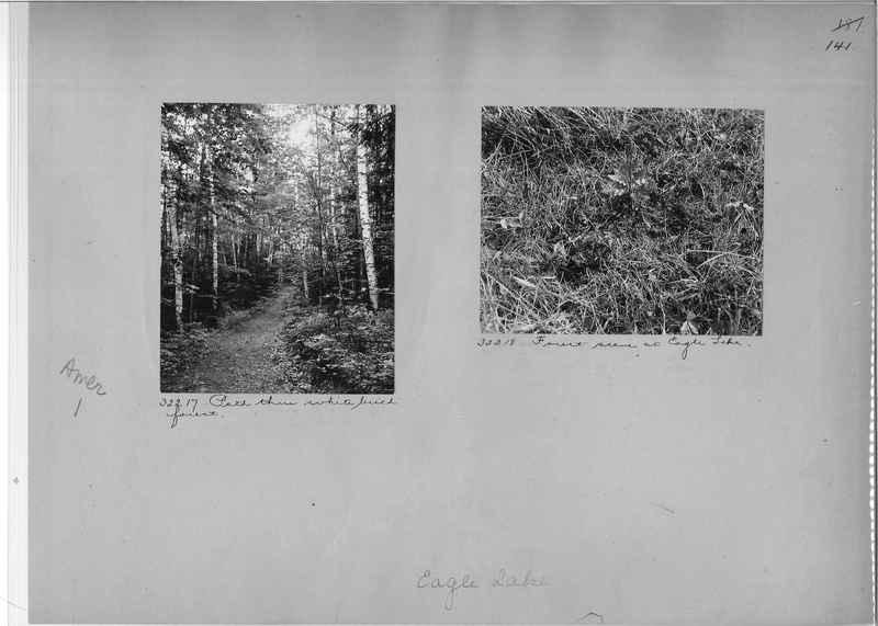 Mission Photograph Album - America #1 page 0141