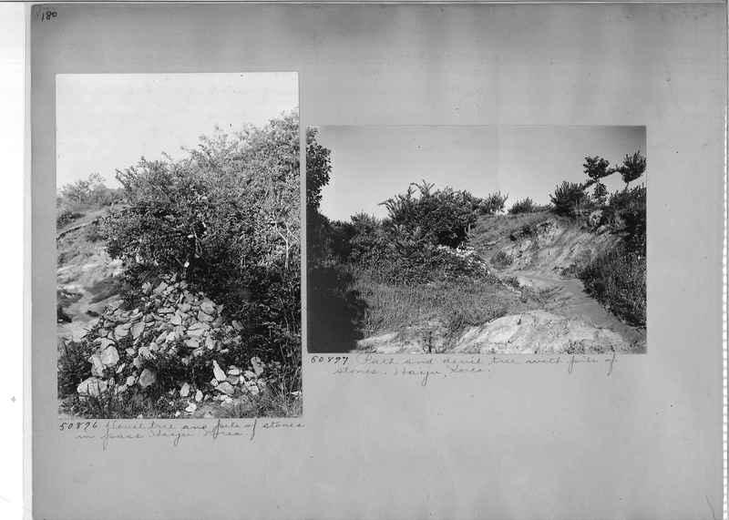 Mission Photograph Album - Korea #3 page 0180.jpg