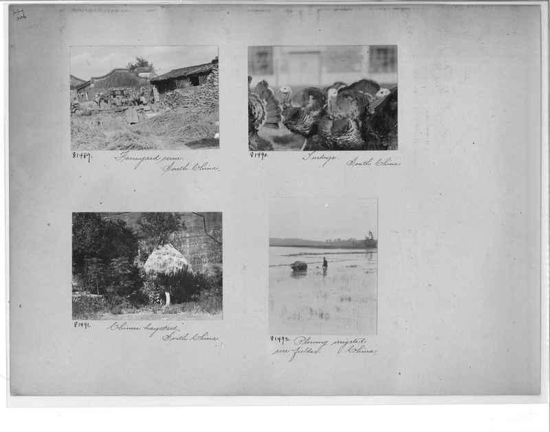 Mission Photograph Album - China #10 pg. 0226