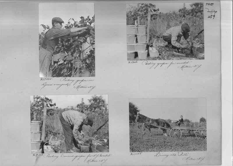 Mission Photograph Album - Rural #04 Page_0259