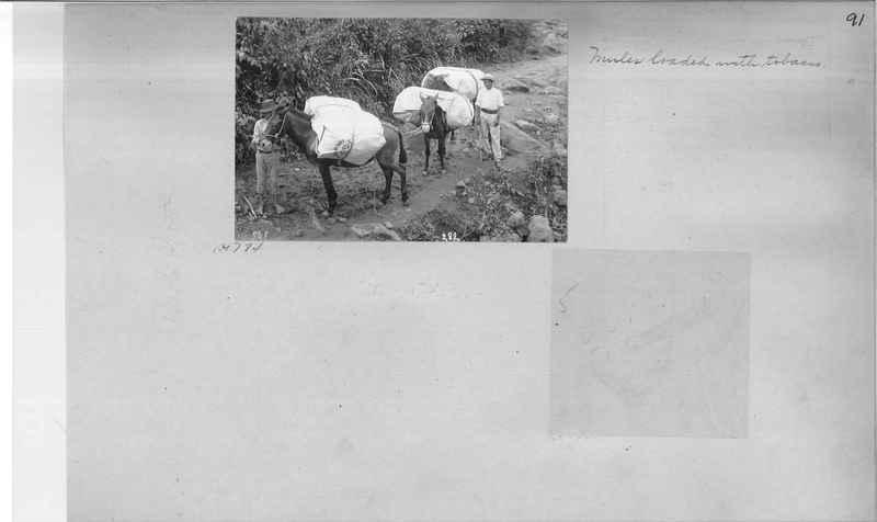 Mission Photograph Album - Puerto Rico #2 page 0091