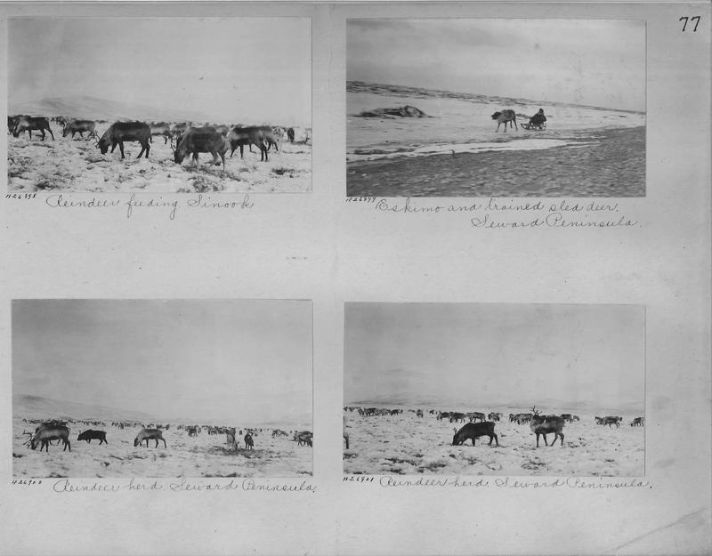 Mission Photograph Album - Alaska #1 page 0077