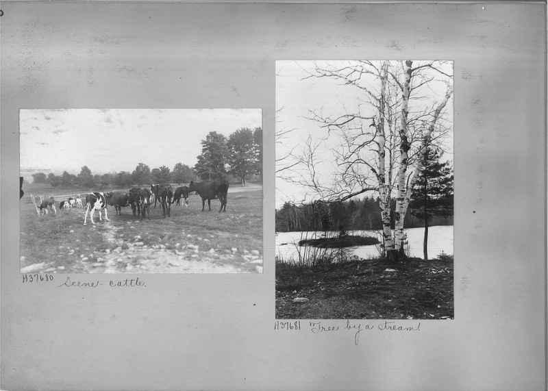 Mission Photograph Album - Rural #07 Page_0010