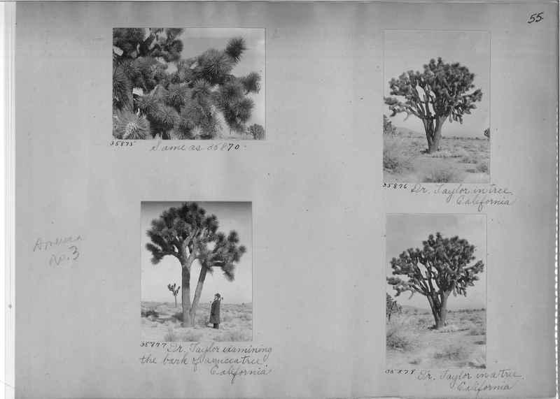Mission Photograph Album - America #3 page 0055