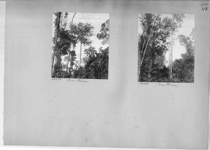 Mission Photograph Album - Burma #1 page 0113