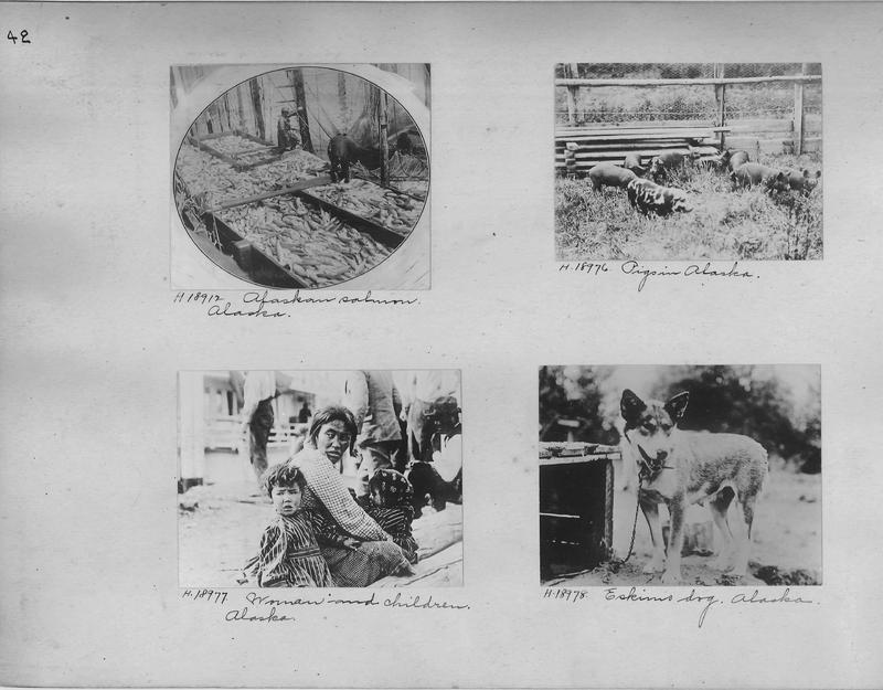 Mission Photograph Album - Alaska #1 page 0042