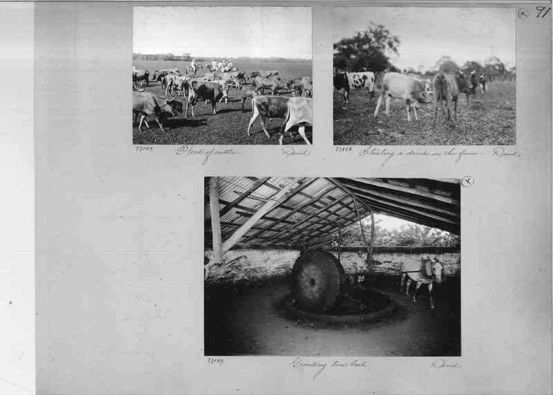 Mission Photograph Album - Panama #03 page 0091