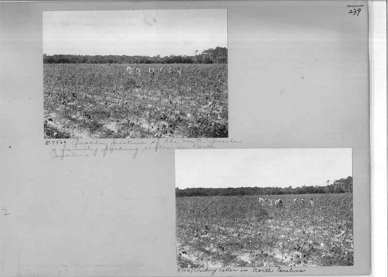 Mission Photograph Album - Rural #02 Page_0239
