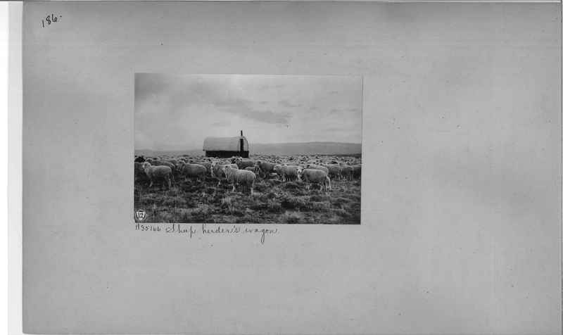 Mission Photograph Album - America #2 page 0186