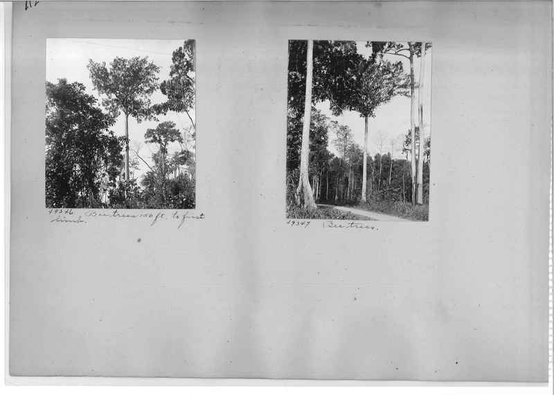Mission Photograph Album - Burma #1 page 0112
