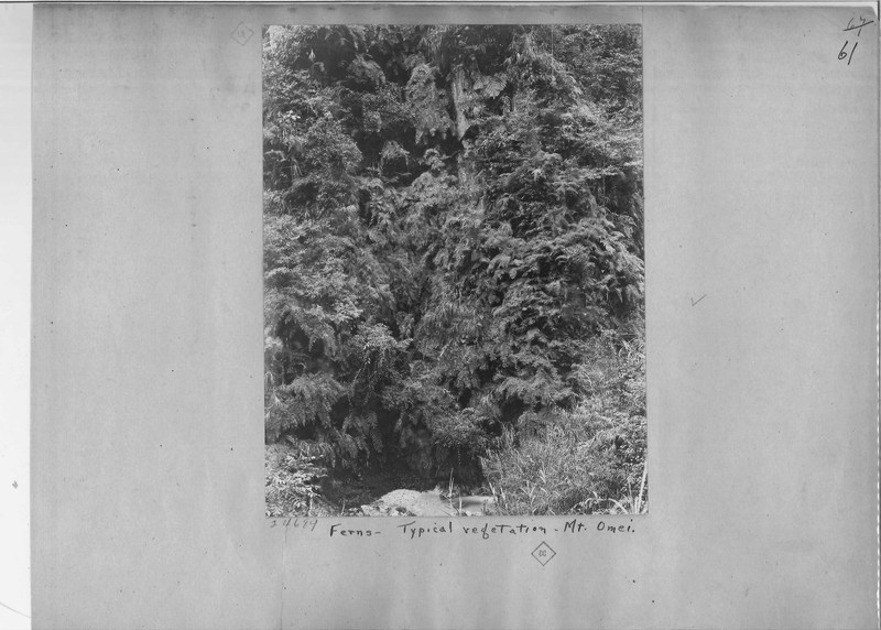 Mission Photograph Album - China #7 page 0061