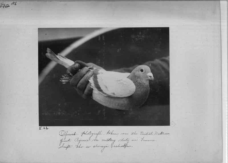Mission Photograph Album - Miscellaneous - O.P. #01 Page_0156