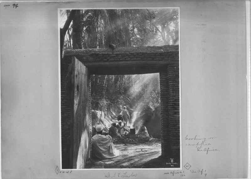 africa-madeira-op-03_0094.jpg