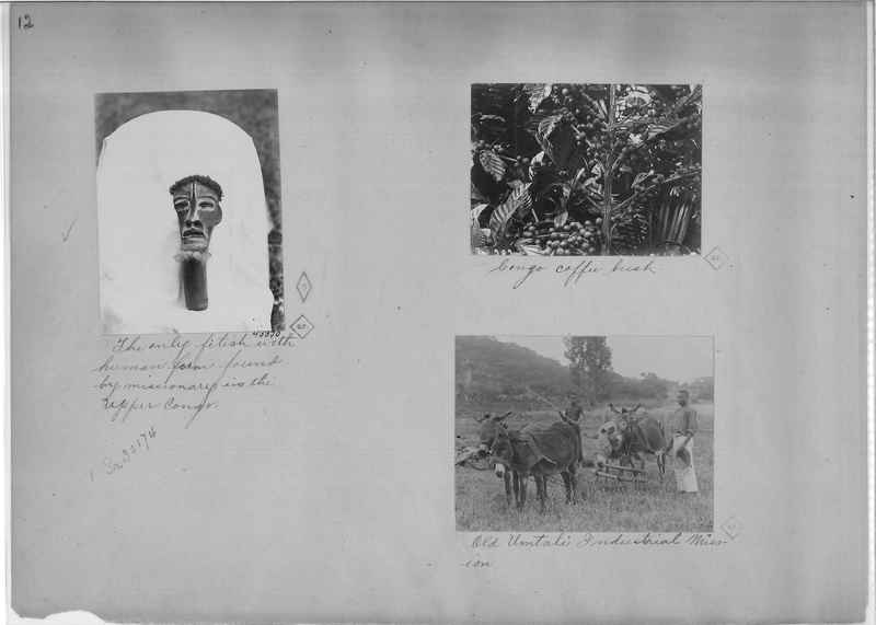 Mission Photograph Album - Africa - Madeira O.P. #2 page 0012