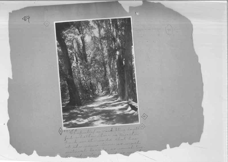 Mission Photograph Album - Mexico - O.P. #01 Page 0084