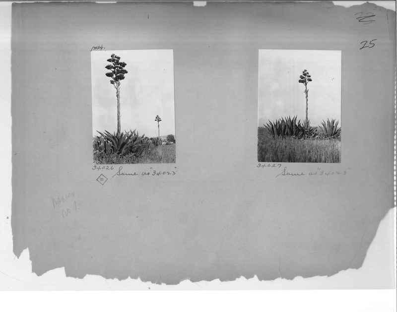 Mission Photograph Album - Mexico #01 Page_0025