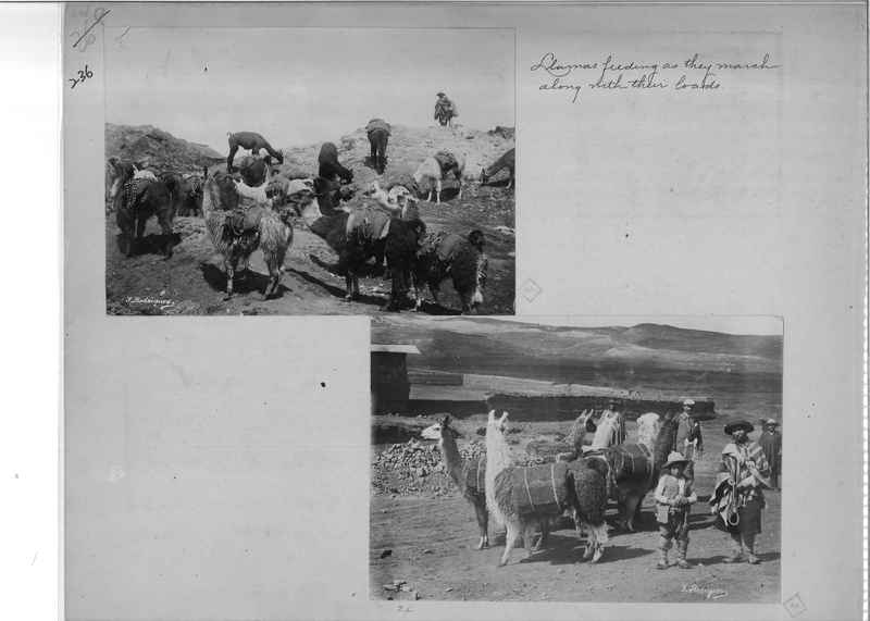 Mission Photograph Album - South America O.P. #2 page 0236