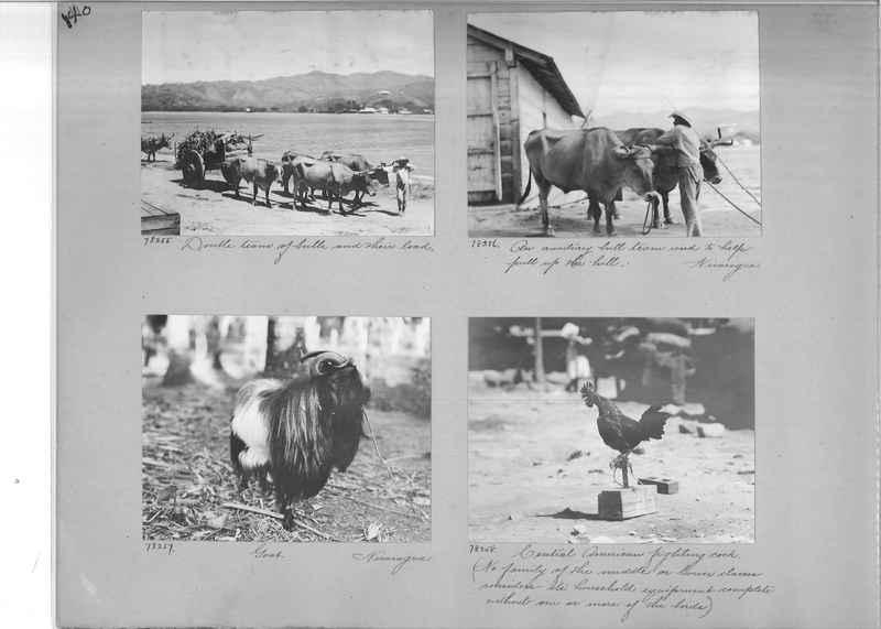 Mission Photograph Album - Panama #04 page 0140
