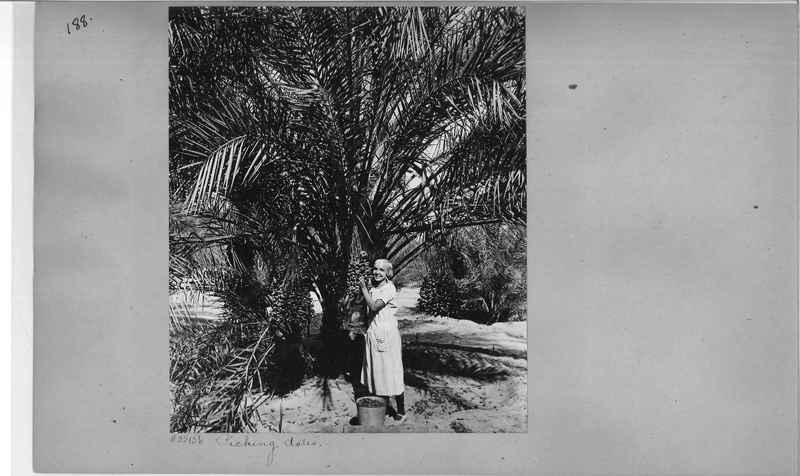 Mission Photograph Album - America #2 page 0188