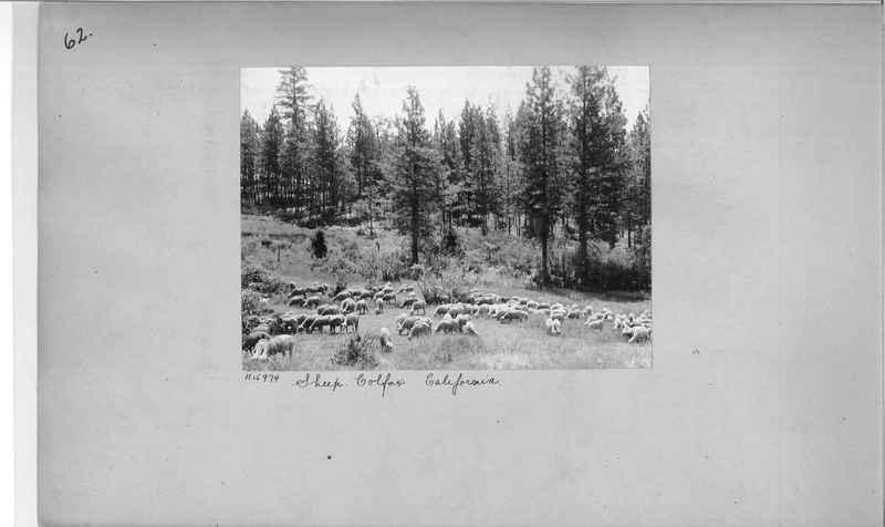 Mission Photograph Album - America #2 page 0062
