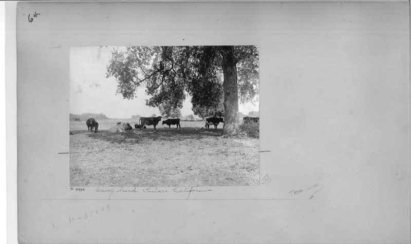 Mission Photograph Album - America #2 page 0064