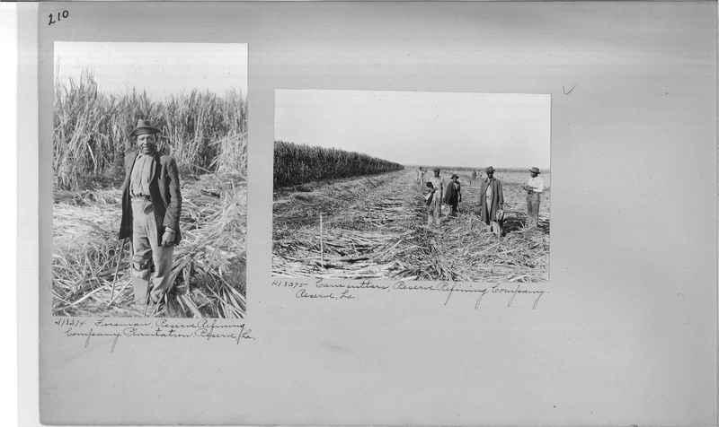 Mission Photograph Album - Negro #2 page 0210