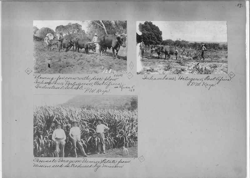 Mission Photograph Album - Africa - Madeira O.P. #2 page 0017