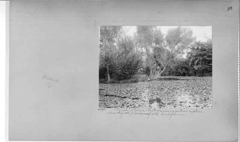 Mission Photograph Album - America #2 page 0059