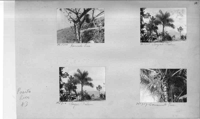 Mission Photograph Album - Puerto Rico #3 page 0101