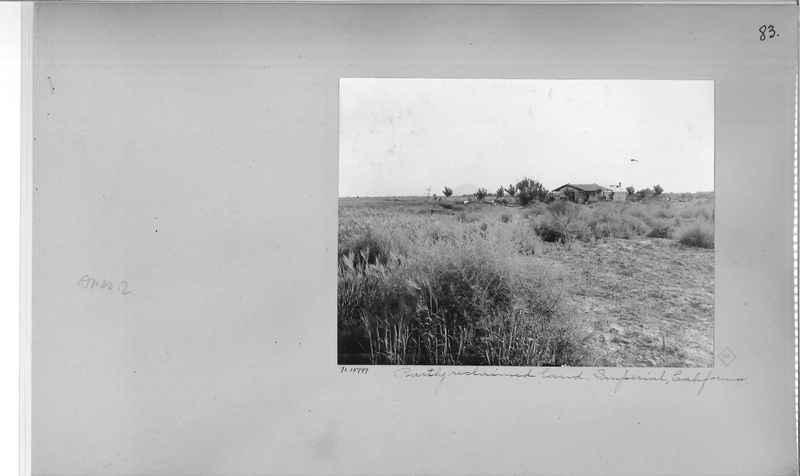 Mission Photograph Album - America #2 page 0083