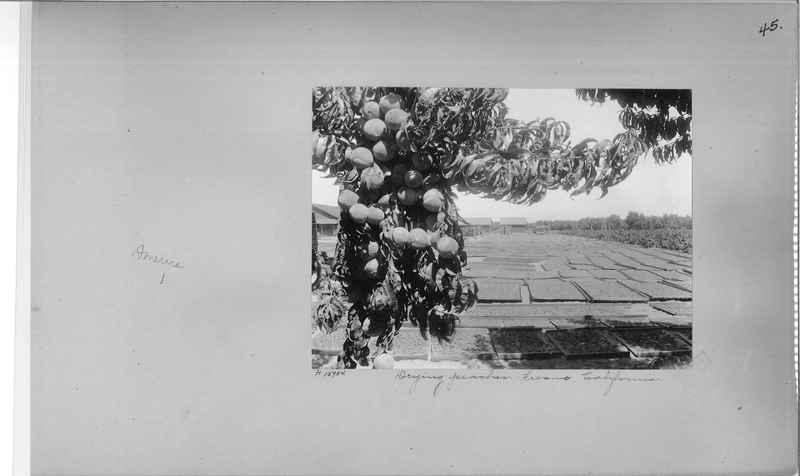 Mission Photograph Album - America #2 page 0045