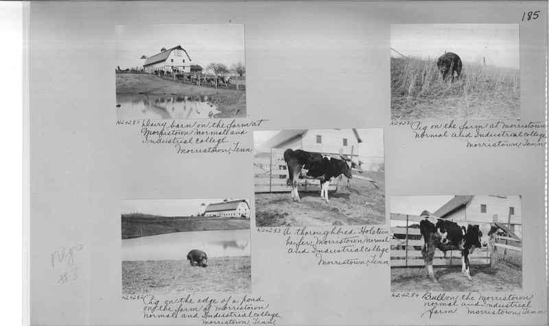 Mission Photograph Album - Negro #3 page 0185