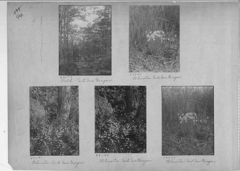 Mission Photograph Album - America #1 page 0094