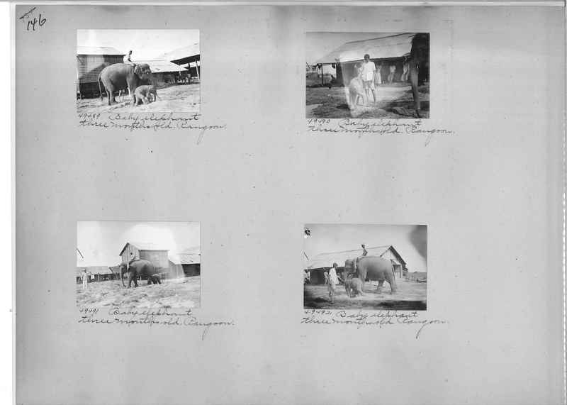 Mission Photograph Album - Burma #1 page 0146