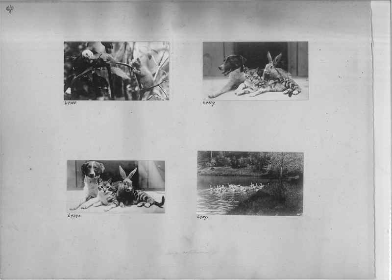 Mission Photograph Album - Mexico #04 page 0086