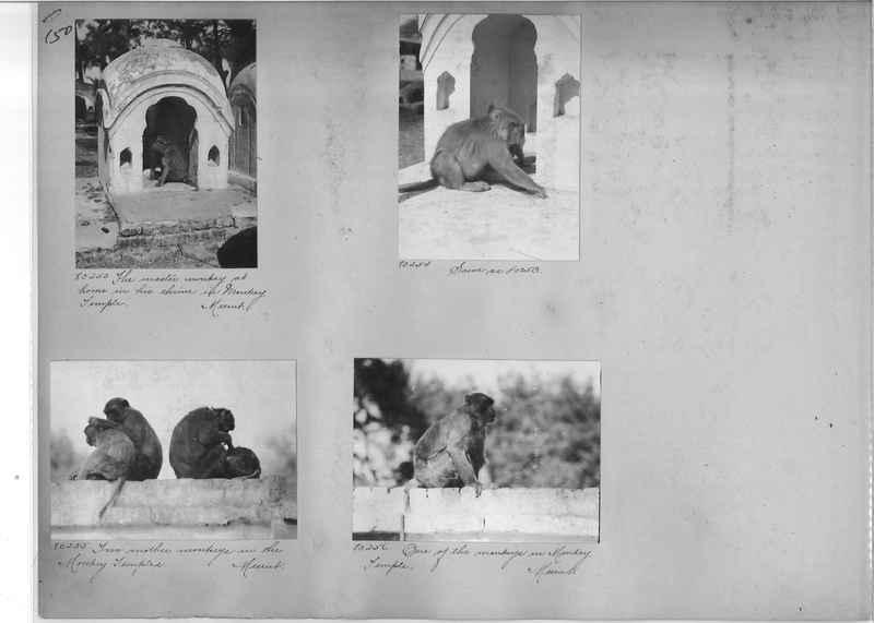 Mission Photograph Album - India #09 Page 0150
