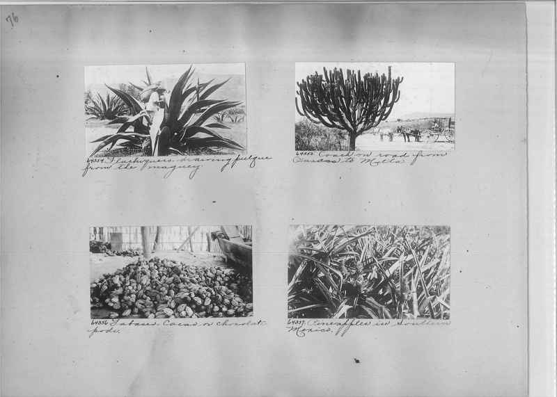 Mission Photograph Album - Mexico #04 page 0076