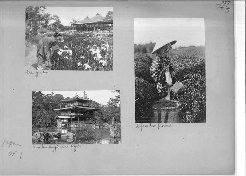 japan-op-01_0259.jpg