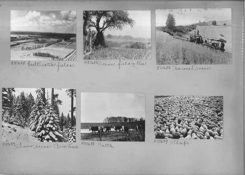Mission Photograph Album - Rural #07 Page_0012
