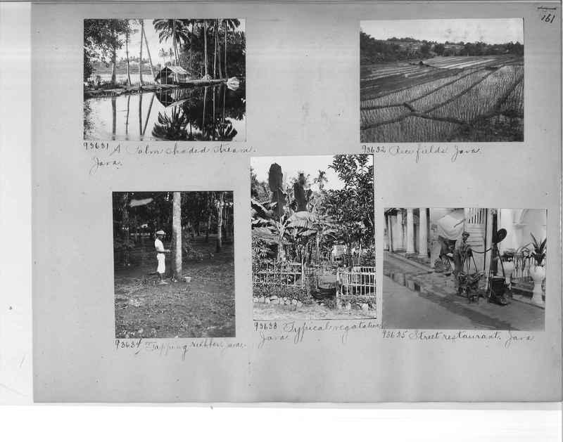 Malaysia-06_0161.jpg