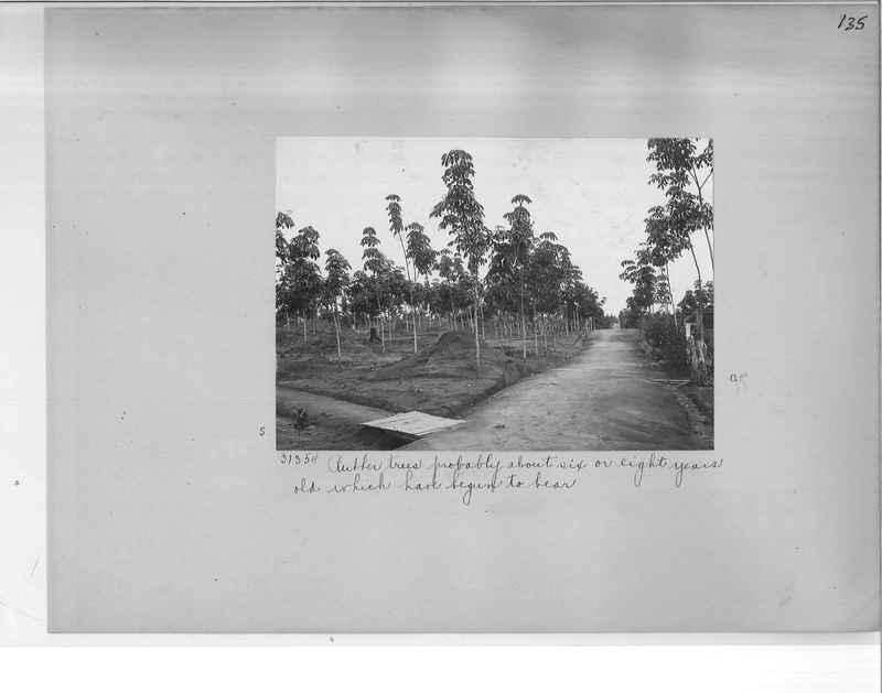 Mission Photograph Album - Malaysia O.P. #1 page 0135
