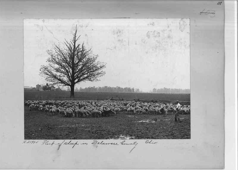 Mission Photograph Album - Rural #05 Page_0111